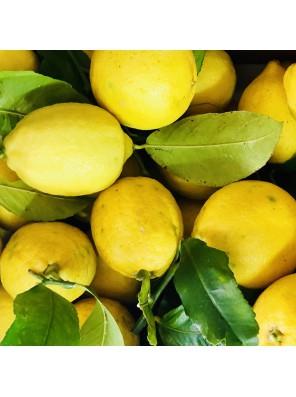 Sardinijos citrinos 1kg